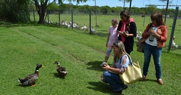 Concientización turística: Naturaleza y relax a la vuelta de la esquina